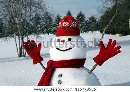 Cute snowman in his red outfit - stock photo