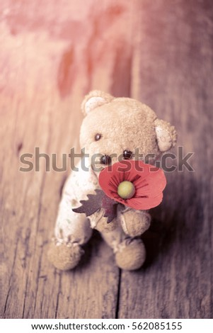Cute teddy bear doll red poppy stock photo royalty free 562085155 cute teddy bear doll and red poppy flowerterans day concept mightylinksfo