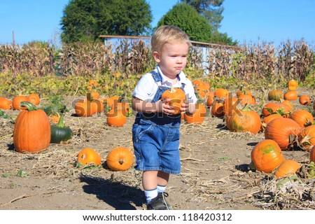 Cute toddler boy finding his first pumpkin while walking through a pumpkin patch.