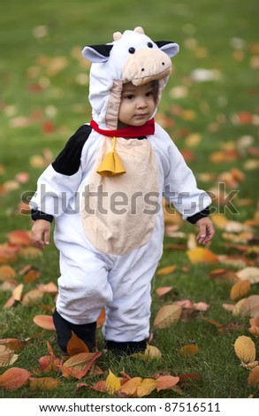 Cute toddler in a cow costume for Halloween. - stock photo