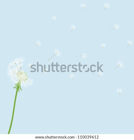 Cute vector dandelion on blue background - stock photo
