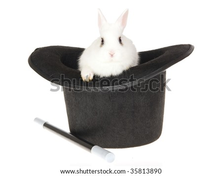 Cute white bunny in top hat, on white background - stock photo
