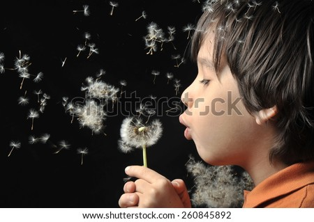 Cute 5 years old boy with dandelion outdoors  - stock photo