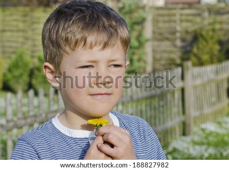 Cute young boy holding a yellow dandelion underneath his chin - stock photo