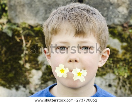 Cute young boy playing with flowers in his mouth - stock photo