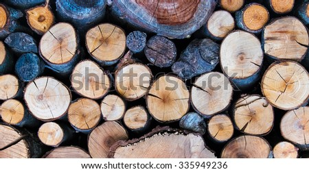 Cutted Logs bright background - stock photo