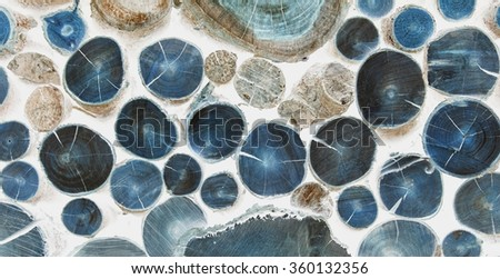 Cutted Logs bright inverted background like cells under a microscope  - stock photo