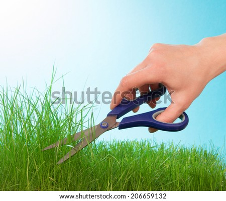 Cutting grass by hairdressing scissors