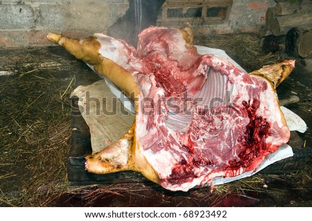 Cutting of the killed pig, on a small farm - stock photo