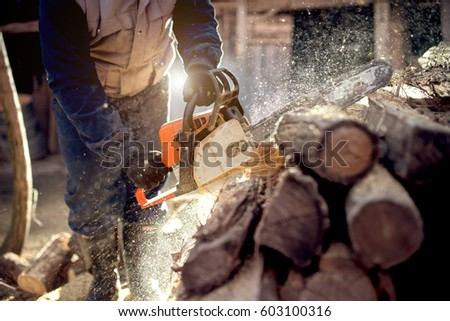 cutting wood with chainsaw at backyard lumberjack work profession