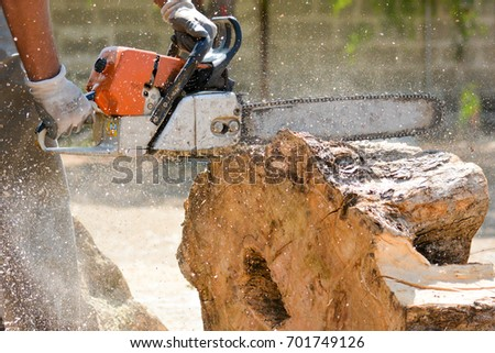 cutting woods in logs with a chainsaw