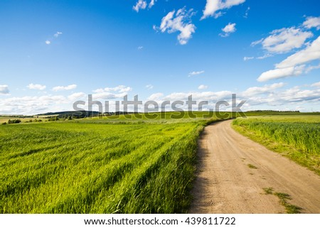Cycle track in a field on a sunny day. Landscape with a beautiful cloudy sky. The road into the field. - stock photo