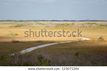 Cycling tourists riding curving trail in emptiness of Everglades national park Florida - stock photo