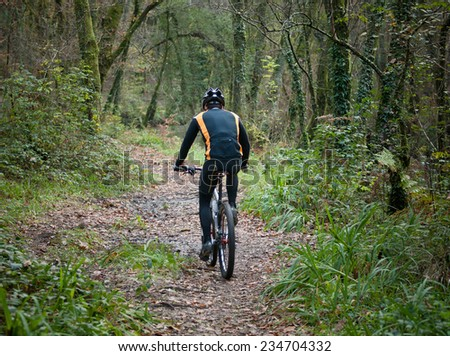 Cyclist practicing mountain bike on a forest trail. The rider is back - stock photo