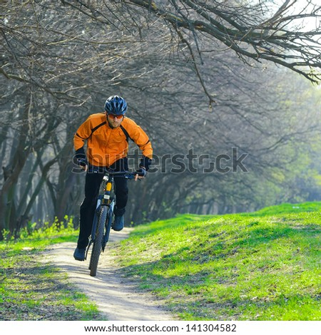Cyclist Riding the Bike on the Trail in the Beautiful Spring Forest - stock photo