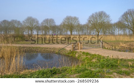Cyclists biking through nature in spring - stock photo