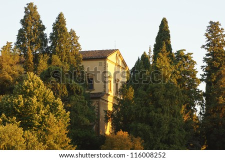 Cypress trees and medieval basilica in Florence at sunset