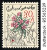 CZECHOSLOVAKIA - CIRCA 1979: A stamp printed in Czechoslovakia shows image of a   Dianthus glacialis, herb series, circa 1979 - stock photo