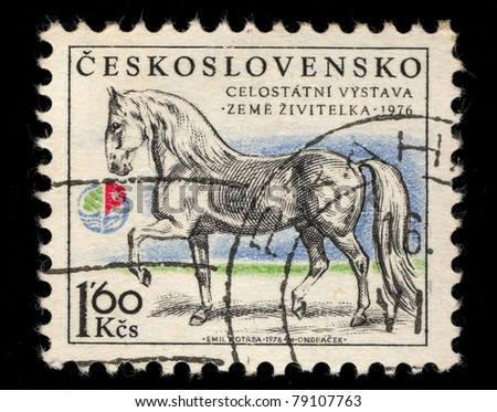 CZECHOSLOVAKIA - CIRCA 1976: A Stamp printed in Czechoslovakia shows image of  a horse, circa 1976 - stock photo