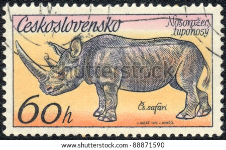 CZECHOSLOVAKIA - CIRCA 1976: A stamp printed in CZECHOSLOVAKIA  shows Phinoceros, series, circa 1976 - stock photo