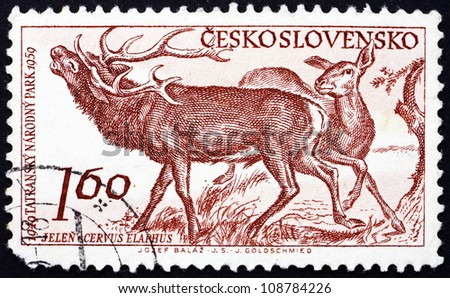 CZECHOSLOVAKIA - CIRCA 1959: a stamp printed in the Czechoslovakia shows Red Deer, Cervus Elaphus,  10th Anniversary of Tatra National Park, circa 1959 - stock photo