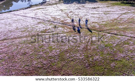 DA LAT, VIETNAM - NOV 20,2016: People on pink grass at Suoi Vang lake, Da Lat, Vietnam. ( view from drone )
