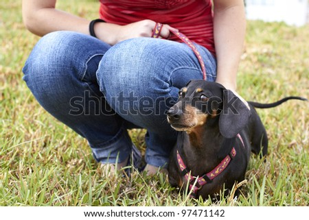 Dachshund and dog owner sitting together in the park - stock photo