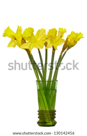 Daffodil (Narcissus jonquilla) in a very old, destroyed glass flower pot. Isolated on white. Isolated with clipping path. DFF image