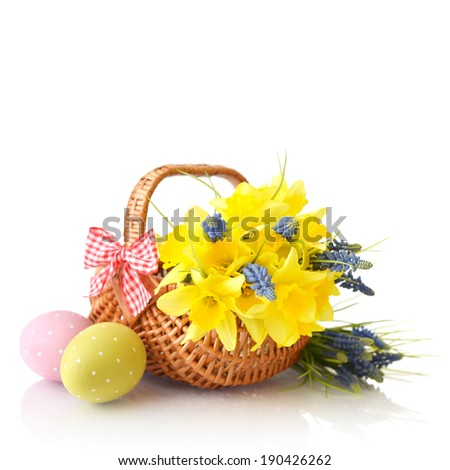 Daffodils in wicker basket and easter eggs isolated on white background
