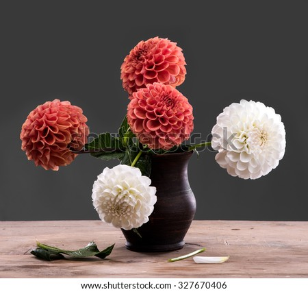 Dahlia flowers in vase on a wooden table on a gray background - stock photo