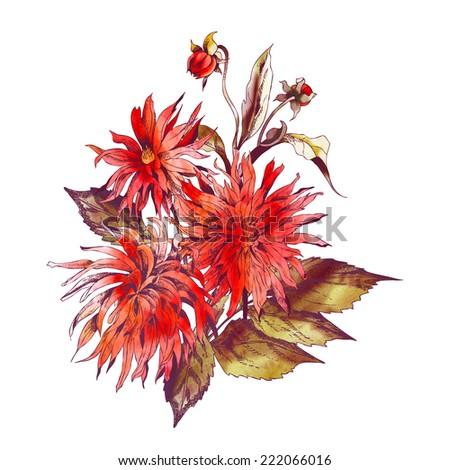 Dahlias Bouquet - stock photo