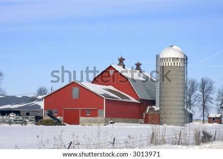 Dairy barn and buildings surrounded with  white snow