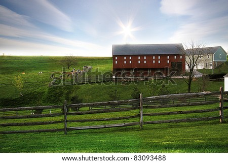 Dairy Farm - stock photo