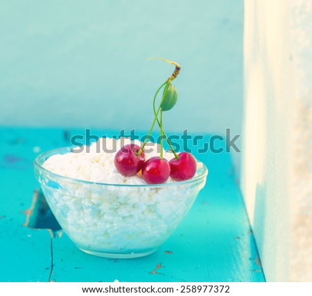 Dairy food curd - stock photo
