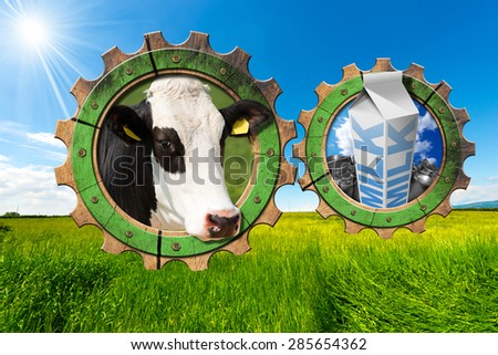 Dairy Industry - Gears in Countryside / Two wooden gears with head of cow, steel cans for milk and white packaging carton of milk in a green pasture. Concept of the milk processing