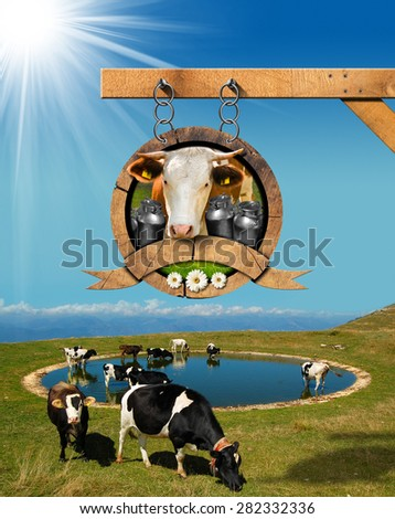 Dairy Products Sign with Grazing Cows. Dairy products sign with head of cow, cans of milk, green grass and daisy flowers. Hanging from a metal chain, on mountain landscape with grazing cows - stock photo