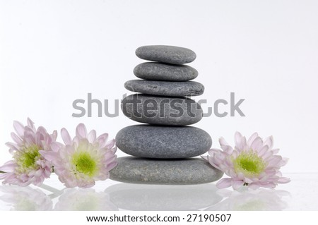 Daisies and stones on white background