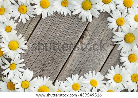 Daisy chamomile flowers frame on wooden garden table. Top view with copy space - stock photo