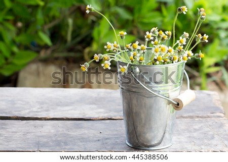 Daisy flowers in metal bucket on wooden table nature background