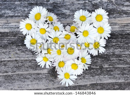 Daisy love symbol on old wooden background - stock photo