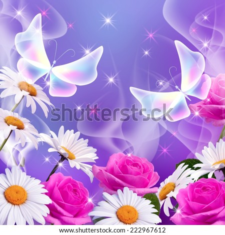 Daisy, pink roses and transparent butterflies - stock photo