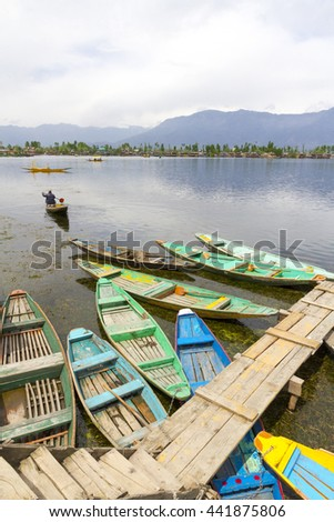 DAL LAKE KASHMIR - Colorful boats