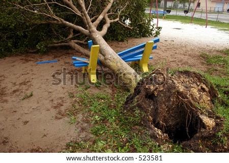 Damage by hurricane Katrina:A tree fell onto a playground bench, Thursday, Aug. 25, 2005, in Miami Florida. - stock photo