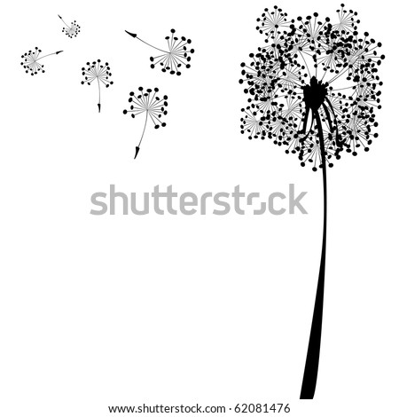 dandelion against white background, abstract art illustration; for vector format please visit my gallery - stock photo