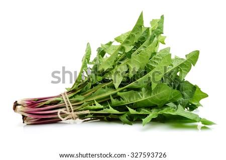 Dandelion, Dandelion Green, Leaf Vegetable on white background - stock photo