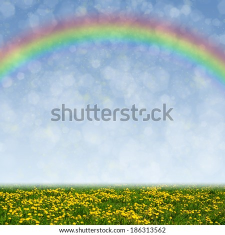 Dandelion field, blue sky and rainbow as a background - stock photo