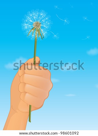 Dandelion Flower - stock photo