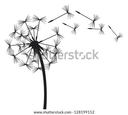 dandelion in the wind - stock photo