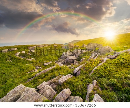 dandelions among white sharp stones on the hillside meadow on top of mountain range in evening light - stock photo