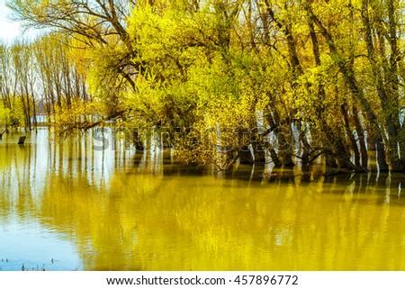Danube delta tranquil autumn scenery - stock photo